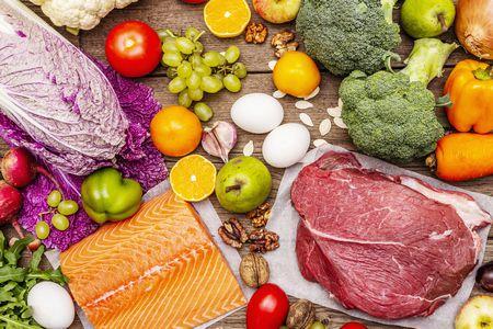 البروتين الحيواني والبروتين النباتي