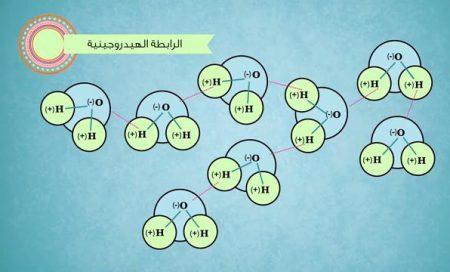 الروابط الهيدروجينية
