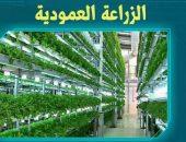الزراعة العمودية