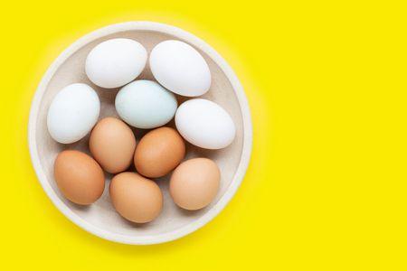 العلاقة بين قشور البيض وهشاشة العظام