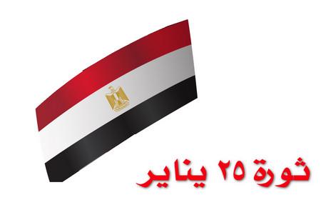 تقرير , ثورة 25 يناير , علم مصر