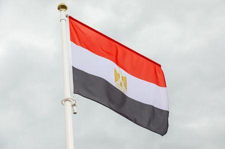 ثورة 25 يناير , الثورة المصرية