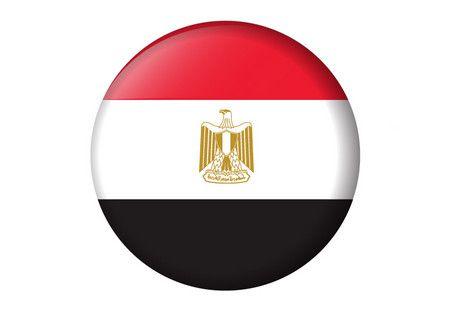 حقائق عن الثورة , ثورة 25 يناير , علم مصر