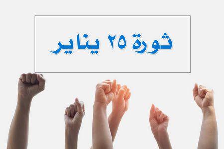 حكم , ثورة 25 يناير
