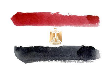 دراسات سابقة , ثورة 25 يناير