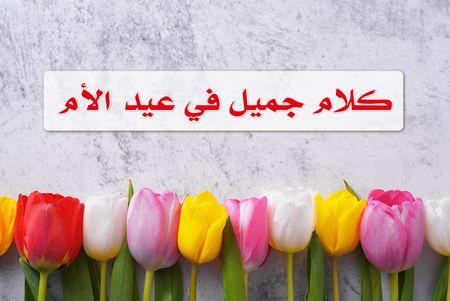 هل تبحث عن كلام جميل في عيد الأم لوالدتك؟ نحن هنا!