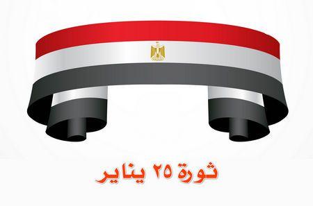 ثورة 25 يناير , ما قيل عن الثورة