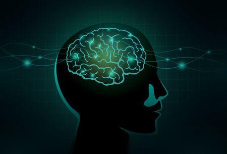 معلومات عن ذاكرة الإنسان