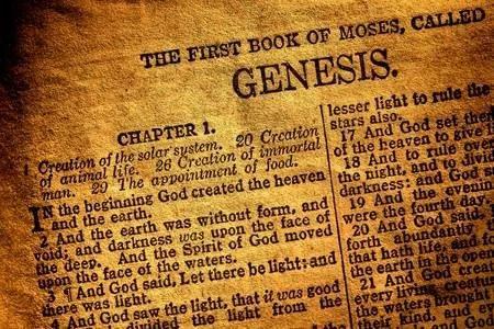 معلومات عن سفر التكوين