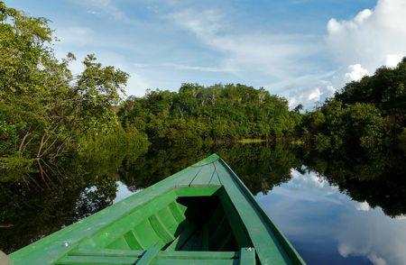 معلومات عن غابات الأمازون بالعربي , Amazon jungle
