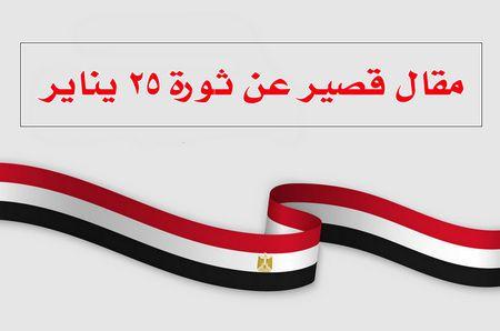 مقال قصير , ثورة 25 يناير