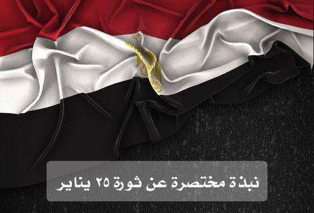 نبذة مختصرة , ثورة 25 يناير
