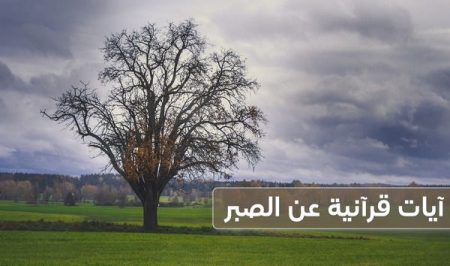 آيات قرآنية عن الصبر , القرآن الكريم