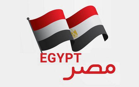 أقوال , ثورة 25 يناير