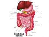 النزيف الهضمي السفلي وأسبابه وعلاجه