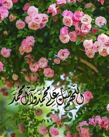 مع الزهور.. اللهم صل على محمد وعلى آل محمد