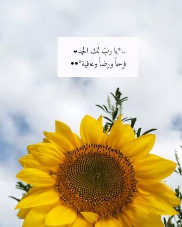 صباحكم معطر بذكر الله , يا رب لك الحمد فرحا ورضا وعافية