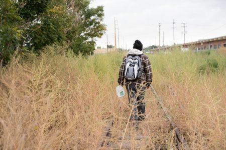 رجل ,المشي ,الهواء الطلق,صورة