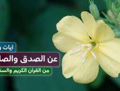 آيات وأحاديث , الصدق والصادقين , القرآن الكريم , السنة النبوية