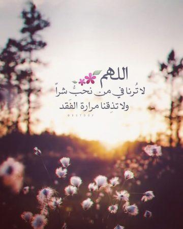 شهر رمضان المبارك , اللهم لا ترنا في من نحب شرًا ولا تذقنا مرارة الفقد ،