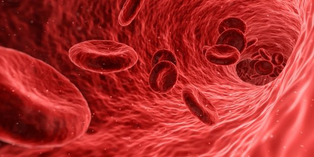 Blood،الدم،صورة،هرمون التستوستيرون,Testosterone