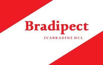 صورة,تصميم, براديبيكت, Bradipect