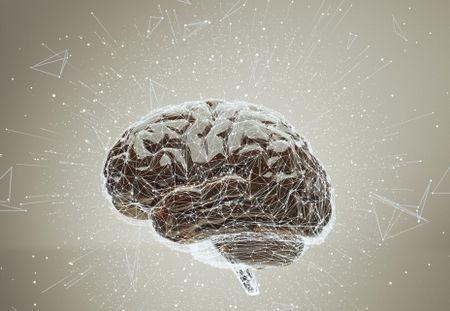 مرض الذهان , Brain , الدماغ , صورة