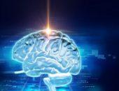صورة , الدماغ , العصب الخامس