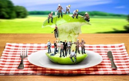 صورة , حمية كامبريدج , السمنة , النظام الغذائي