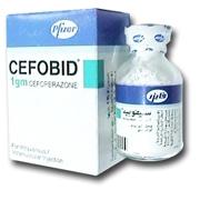 صورة, عبوة ,دواء, سيفوبيد , Cefobid