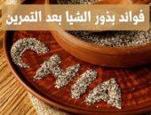 فوائد بذور الشيا بعد التمرين , Chia seeds