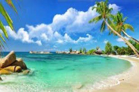 جزر القمر ، تكلفة منخفضة ، السلاحف ، جزيرة موهيلي ، مايوت ، جزر القمر الغربية
