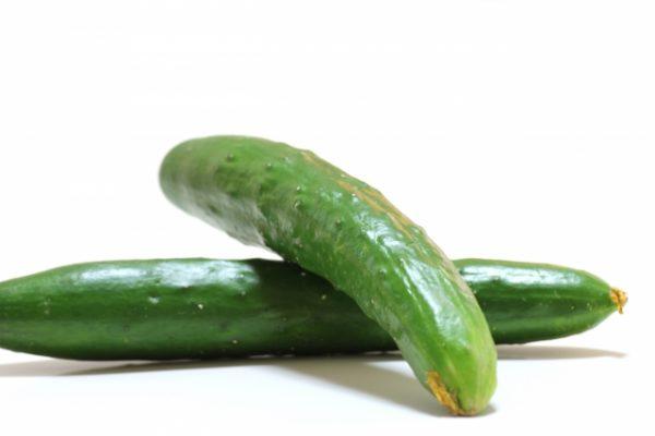 Cucumber،الخيار،صورة