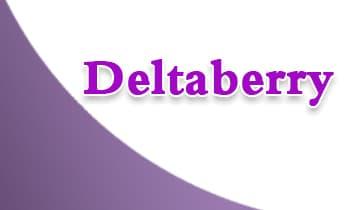 صورة,تصميم, دلتابيري, Deltaberry