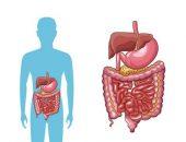 صورة , الجهاز الهضمي , القولون العصبي