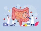 صورة , الجهاز الهضمي , الأمعاء الدقيقة