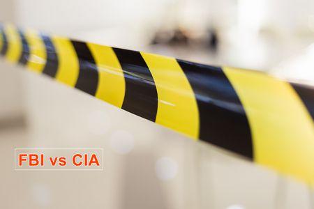 FBI vs CIA , الولايات المتحدة الأمريكية, النظام الكونفدرالي