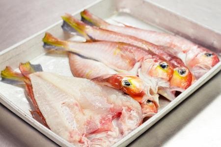 وجبة،سمك،اسماك،صورة