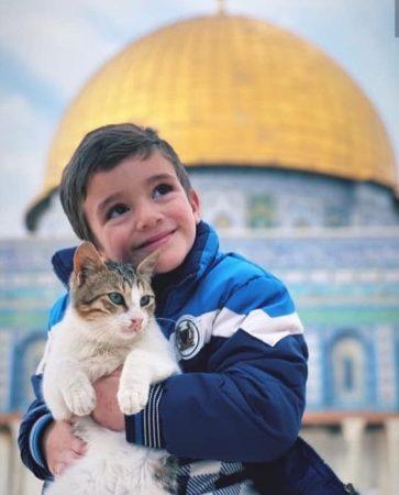 صور ملهمة , دعم القضية الفلسطينية