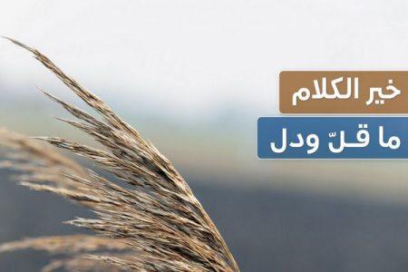 خير الكلام ما قل ودل