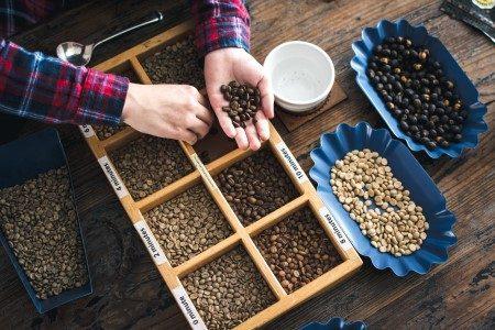 القهوة الخضراء ، القهوة العادية ، حرق الدهون ، مضادات الأكسدة ، الكافيين