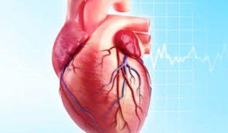 القلب ، تصلب الشرايين ، ارتفاع الضغط