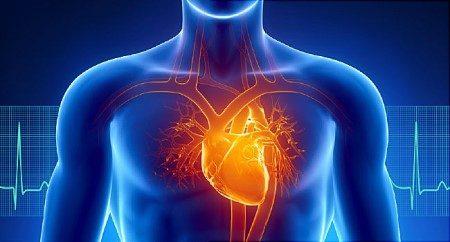 فتحات القلب ، اعتلالات القلب ، مشاكل القلب ، قلب الطفل