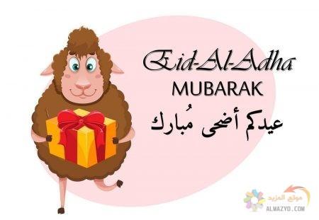 تهاني عيد الأضحى، عيد أضحى مبارك، كلمات تهنئة، عيد مبارك، صورة خروف