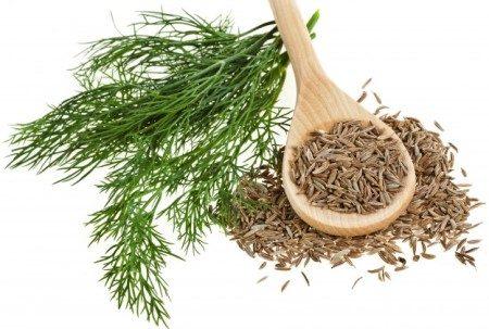 الكروياء ، النباتات العطرية ، الطب البديل ، الجهاز الهضمي ، إضطرابات النوم ، صحة العظام ، الكلى