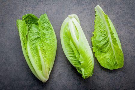 صورة , الخضروات , الخس