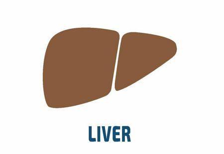 السمنة , أمراض الكبد
