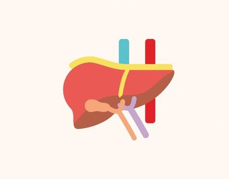أمراض الكبد ، صورة