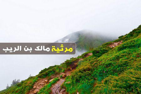 شرح مرثية مالك بن الريب , Malik Bin Al Rayb