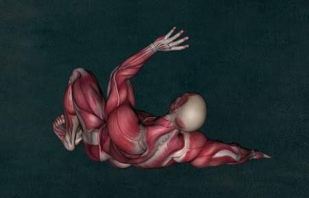 وهن العضلات ، ضمور العضلات ، عضلة القلب ، شلل الأطفال ، الفيتامينات ، الغثيان